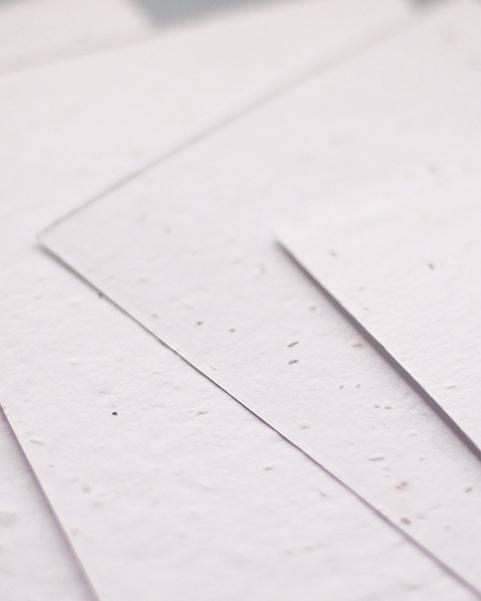 faire part mariage original papier a planter